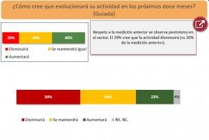 Grafico EOC 1